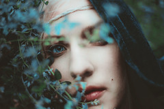 the silent watch (Kindra Nikole) Tags: flower floral silent watch silence cloak celtic mythology tolkien watcher mythos cloaked n