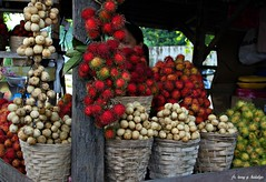 fruits of the season (TON70) Tags: fruits season fruitstand rambutan lanzones