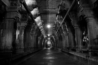 3463 - Ekambaranathar Temple ,Kanchipuram