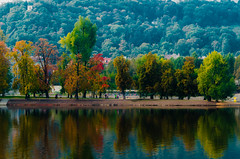 Vltava river in October (David Doua) Tags: autumn trees red orange brown color reflection tree green colors yellow river colours prague vltava