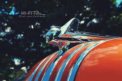 Hail To The Chief (Hi-Fi Fotos) Tags: auto detail metal design nikon classiccar gm chief style class ornament chrome american hood americana pontiac bling hoodornament classy chieftan d5000 hallewell hififotos