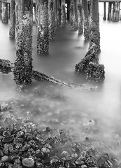 (llabe) Tags: longexposure blackandwhite motion blur pier washington movement nikon pugetsound tacoma piling d7000 bw10stopndfilter
