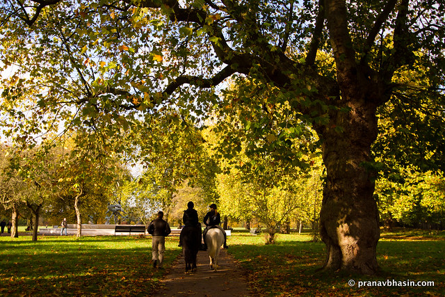 Horse Riding At Hyde Park, London, United Kingdom