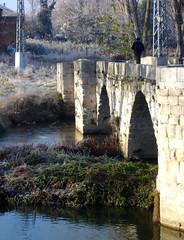 Cruzando en una maana helada. (margabel2010) Tags: espaa spain puentes ros hielo arcos piedra palencia escarcha paisajesfluviales