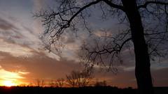 P1100242 (A Million Shards of Light) Tags: pink blue trees sunset sky orange moon ice nature clouds twilight peace dusk connecticut horizon atmosphere february fairfield easton cirrus