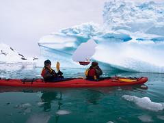 Antarctica Aitcho Island (Dan Cosmin) Tags: blue sun ice water landscape penguin penguins kayak outdoor south antarctica seal kayaking whale iceberg
