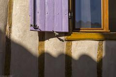 L1005141 (ChristianLeduc) Tags: 09 2017 ariége bastide france hiver midipyrénées mirepoix occitanie