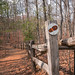 The North Carolina Arboretum (Asheville, NC)
