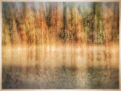 Autumn Pond (GR167) Tags: fall autumn snapseed phototoaster abstract slowshutterapp iphoneography iphoneart impressionism