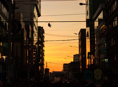 Detalle en el ocaso (Luis Riveraw) Tags: street streetphotography city urban ocaso sunset sun horadorada atardecer ciudad lima canon600d canoneosrebelt3i contraluz contrast