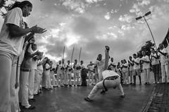 Capoeira Camaleao Brasil. (BIANO SKATE STYLE.) Tags: capoeira art luta dança afro zumbi lutabrasileira brasil regional capoeiraregional capoeiradeangola arlivre pb pretoebranco fotografiapretoebranco bnw