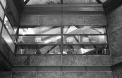 Visioni (Valt3r Rav3ra - DEVOted!) Tags: nikonf90x nikon analogico film ilfordhp5 bw biancoenero blackandwhite valt3r valterravera visioniurbane urbanvisions milano analog