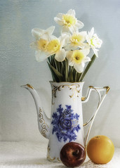 Daffodils and Fruit (Linda Kosidlo) Tags: odc daffodils stilllife texture coffeeserver china apple orange naturallight yellow red
