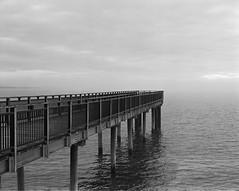 Gallagher Pier (ErikEdmund) Tags: buffalo wny western new york ilford fp4 black white bw lake erie rust belt pentax 6x7 120 105mm 24