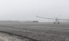 Northern Indiana Farm's & Chickens (GLC 392) Tags: ibcx indiana boxcar box car company ckin chesapeake farm fields emd sdm 804 fog black white la crosse in grain train railroad railway rail road foggy irrigation sprayer long hood forward