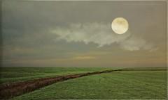MOON OVER AMELAND (bert • bakker) Tags: ameland island eiland gras grass moon maan lucht sky dijk dyke weide meqadow avond evening northernpartofholland zee sea