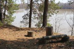 DSC02575 (aleksey1971) Tags: siberia altai biysk nature landscape river spring biya сибирь алтай бийск пейзаж природа весна река бия