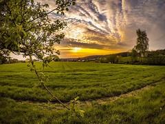 Sunset,landscape (Karlo Celcic) Tags: goprohero5 nature colors spring sun clouds nürnberg deutschland landscape sunset gopro