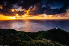 Explosion 刚刚好 (Mr F Ding) Tags: sunset capereinga landscape seascape landmark lighthouse northland newzealand nikon nikonnz ngc tgi natgeo goldenhour longexposure vsco 日落 尼康 d7200 nd1000 clouds sky sunny