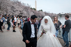 Cherry Blossom Wedding (ep_jhu) Tags: spring bride washingtonmonument wedding dc fujifilm muslims mlk groom tidalbasin pareja fuji washington couple x100f dcist cherryblossoms districtofcolumbia unitedstates us