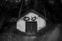 Evil Eye (CoolMcFlash) Tags: house face building architecture bnw bw blackandwhite canon eos 60d sanktwolfgang austria salzburg haus gesicht gebäude architektur sw schwarzweis blackwhite österreich funny lustig fotografie photography sigma 10mm fisheye graffiti angst fear spooky unheimlich