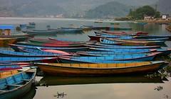NEPAL, In Pokhara, Schlechtes Wetter am Phewa-See, Boote, 16061/8324 (roba66) Tags: phewalakefewalake lakesee reisen travel explore voyages roba66 visit urlaub nepal asien asia südasien pokhara landschaft landscape paisaje nature natur naturalezza boot boat ship water wasser