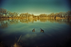 Tingley Pond (Mike Connealy) Tags: vuws vivitarultrawideandslim fuji200 unicolorc41 albuquerque