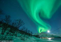 Aurora (gscatani) Tags: aurora boreal nikon d750 fx norwayauroratromsnorwayno troms 1424mm f28 afs g ed n