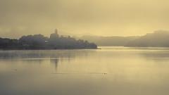 Landscape with fog, swamp. Paisaje pantano con niebla. (hajavitolak) Tags: a7 csc captureone evil fullframe fx ilce7m2 milc mirrorless sinespejo sony sonya7ii sonya7m2 emount embalse ullíbarrigamboa alava paísvasco countrybasque niebla fog calma relax tamron tamron9028
