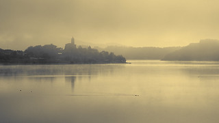Landscape with fog, swamp. Paisaje pantano con niebla.