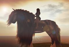 TAOX Yonval & Zulam (taox_novaland) Tags: sl horse love avatar 3d