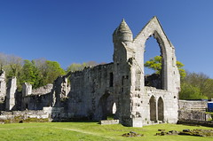 End wall (Sundornvic) Tags: ruins abbey haughmondabbey stone destruction broken arches walls sun shine spring sunshine sky blue countryside heritage
