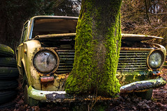 back to the future II (Dagelijksbrood) Tags: abandoned europe car urbanexploration lostinthewoods 2017 belgium urbex lost lostcar cargraveyard abandonedcar green decay urbanexplorer verlaten naturetakingover auto flickr metal nikkor natur nature creepy spooky eerie dark rustyandcrusty rusty nikon digital d3300 neglected decaying oldandbeautiful