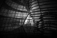 .. II .. (*ines_maria) Tags: germany berlin reichstag urban urbanart urbanexploration city archritecture building modern futuristic construction love couple lines reflection glass perspective bw blackandwhite monochrome mono panasonic dmcgx8 panasonicdmcgx8 interpretation