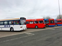 WHH 556S, FTN 710W, R855 PRG & FTN 708W (TEN6083) Tags: gateshead intumetrocentre national whh556s rev01 710w ftn 4710 northerngeneral renown wright b10ble volvo r855prg 4855 easyaccess gonorthern northernnationalrestorationgroup national2 leyland ftn708w 4708 gowearbuses countydurhambuspreservationgroup bus nebuses