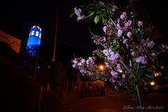 Coit Tower - 041517 - 08 (Stan-the-Rocker) Tags: stantherocker sony ilce sanfrancisco coittower telegraphhill northbeach sel16f28