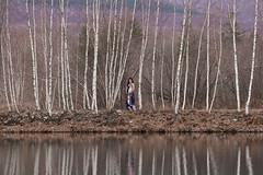 IMG_3413 (seibert.lillian) Tags: vermont pregnancy pregnant portrait landscape april mother pond trees