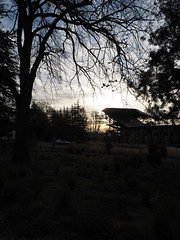 P4220126 (starimmak) Tags: uw stadium sunrise