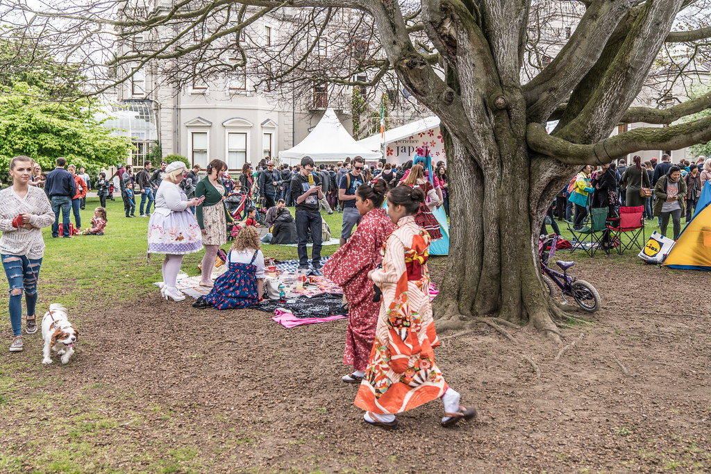 EXPERIENCE JAPAN FESTIVAL DAY 2017 [AT FARMLEIGH IN PHOENIX PARK]-127159