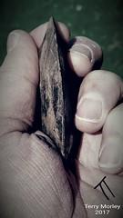 The Edge (ttbeep) Tags: loopandsocketed axehead bronzeage yorkshire edge sharp blackandwhite livinginyorkshire livinghistory thepast ourancestors screenshotsamsungs6edge samsungs6edge timetraveller therealdrwho handheld