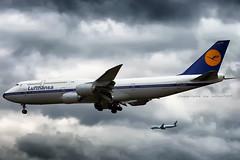 Lufthansa Boeing 747-8i Retro livery at FRA (D-ABYT) (wilco737) Tags: eddf fra frankfurt am rhein main international airport airplane plane flugzeug flugzeuge aviation fliegerei spotting spotter planespotter planespotting boeing boeing747 boeing748 boeing7478 b747 b748 b7478 747 748 7478 boeing7478i b7478i 7478i intercontinental 37844 ln1513 ln 1513 dabyt retro classic old livery special köln dlh lh lufthansa german airlines boeing747830 b747830 747830 air canada ac aca boeing787 b787 787