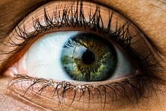 Green love (Joseph.K.) Tags: macro eyes green eye