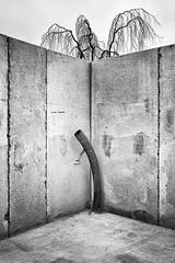 Tube (Jens Flachmann) Tags: sculpture wall tube tree blackandwhite bielefeld germany urban constructionsite