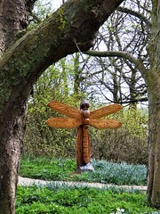 Dragonfly (Martellotower) Tags: steve iredale crow wood danby moors centre sculpture chain saw dragonfly