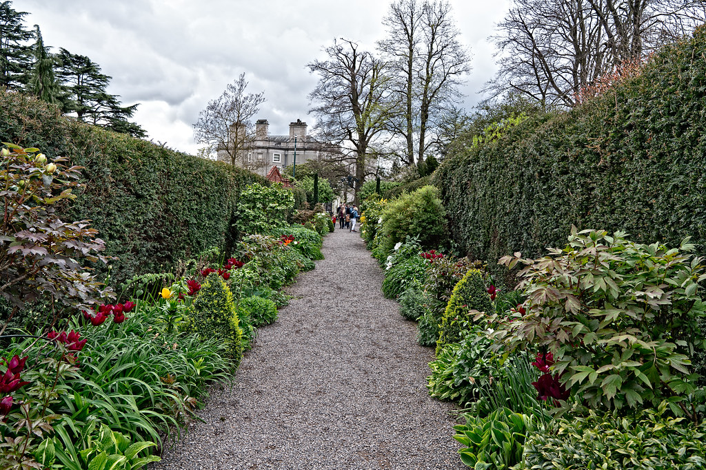 FARMLEIGH HOUSE [ GROUNDS AND GARDENS PHOTOGRAPHED APRIL 2017]-127220