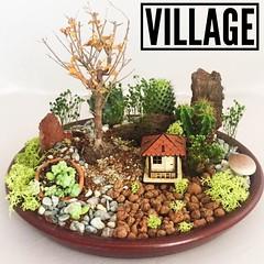 Village 👉www.bahcehane.net / Siparişiniz içi 0545 311 53 50 numaralı hattımızdan bize ulaşabilirsiniz.  #bahcehane#butikcicek#minyaturbahce#village#picoftheday#cactus#echeveria#terrarium#teraryum#succulent#webstagram#style#creative#tasarim#kur