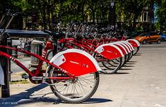 Grab a Bike! (BGDL) Tags: lightroomcc nikond7000 bgdl afsnikkor18105mm13556g urban bicycles city barcelona spain 7daysofshooting week42 leadinglines focusfriday