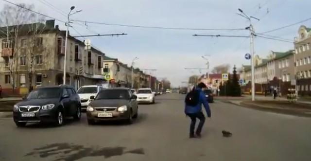 ВТатарстане парень героически спас выбежавшего надорогу котенка