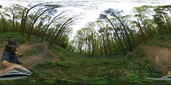 Hay wood 30th April 2017 (boddle (Steve Hart)) Tags: wild wilds wildlife life nature natural bird birds flowers flower fungii fungus insect insects spiders butterfly moth butterflies moths creepy crawley winter spring summer autumn seasons hay wood 30th april 2017 samsung gear 360