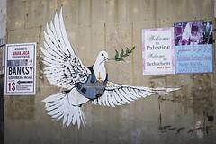 PALESTIN_020_0417@ANDREAFEDERICIPHOTO (Andrea Federici) Tags: betlemme bethlem palestina israele
